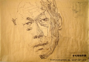 Topographical Map of LKY (2007), Tan Seow Wei, Mixed media