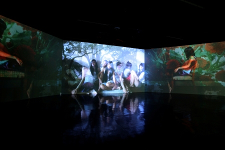Full Moon & Foxes (2009), Genevieve Chua, Video Installation