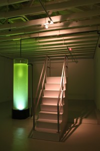 Lifeblood (2009), Twardzik Ching, Acrylic tank, PVC pipes, wooden staircase, Singapore River water