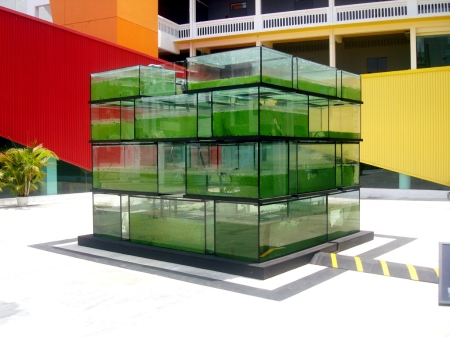 Lifeblood (2009), Twardzik Ching, Acrylic tank, PVC pipes, wooden staircase, Singapore River water